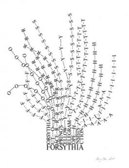 Forsythia by Mary Ellen Solt